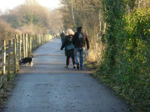 Dogwalking on the path